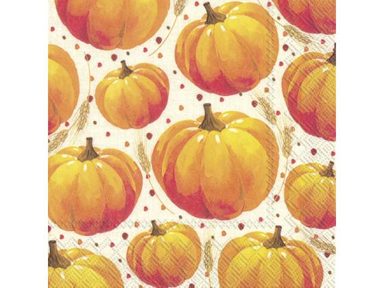 """Pumpkin allover"" lunch"