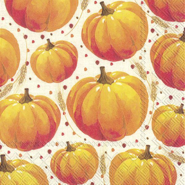 """""""Pumpkin allover"""" kaffe"""
