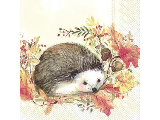 """Sweet Hedgehog"" lunch"