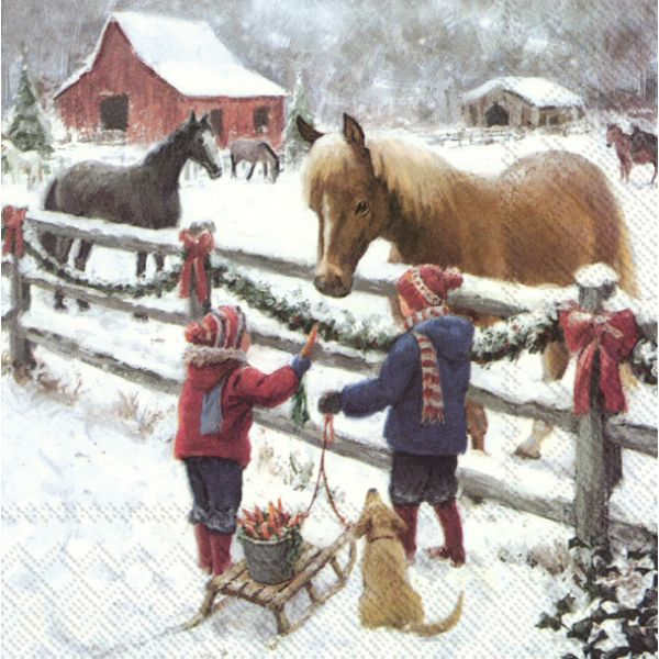 Winter Horse – Lunsj