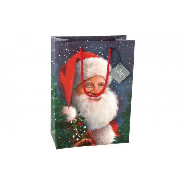 Santa is waiting – gavepose
