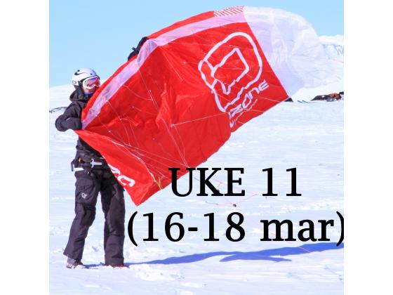 Haugastøl - Uke 11 (16-18 mar)