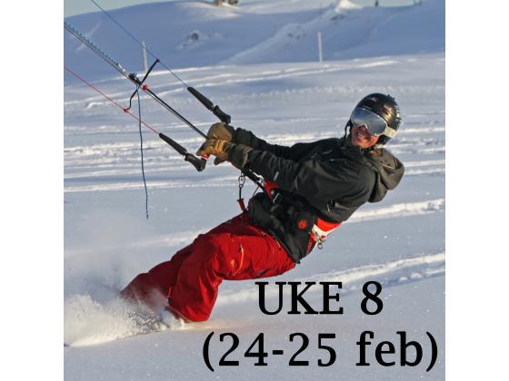 Haukeli - Uke 8 (24-25 feb)