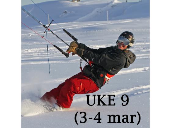 Haukeli - Uke 9 (3-4 mars)