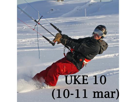 Haukeli - Uke 10 (10-11 mar)