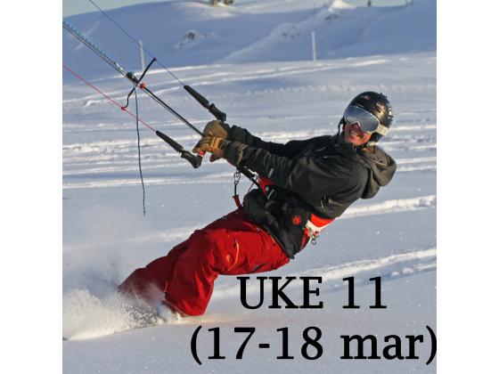 Haukeli - Uke 11 (17-18 mar)