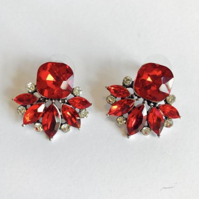 Red Elegant Earrings