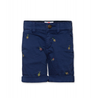 Barry Printed Chino Shorts