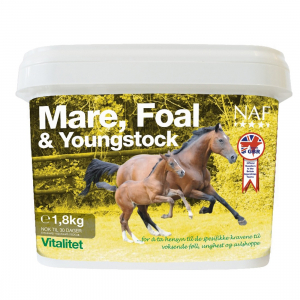 NAF Mare, Foal & Youngstock