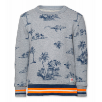 C-Neck Sweater Aop Flock