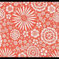 Coral Floral Pop