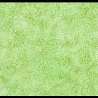 Lime Tonal Paisley
