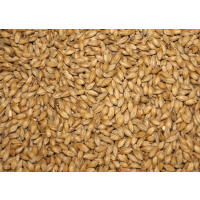 25kg Munich Light Malt - (Castle)