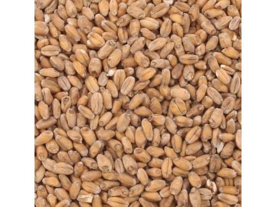 Hvete Malt Lys 1kg (Weyermann)
