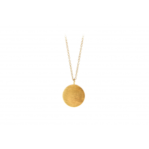 Coin smykke