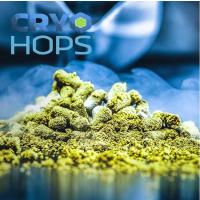 Cascade Cryo Hops 14,5%  - 100g - 2017
