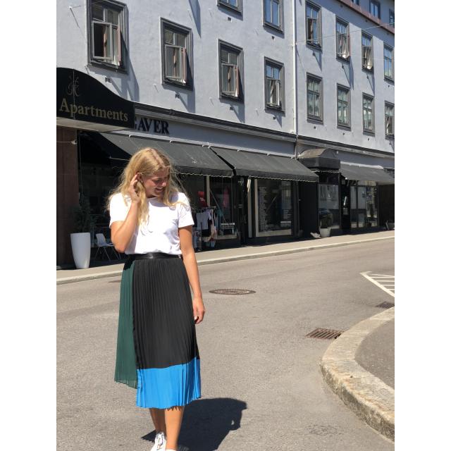 Plissa Skirt