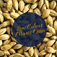 Low Colour Maris Otter 1kg (Simpsons)