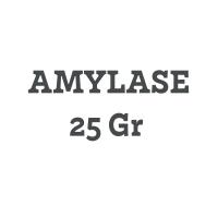 Amylase 25 gram