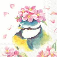 """""""Beautiful bird"""" lunch"""