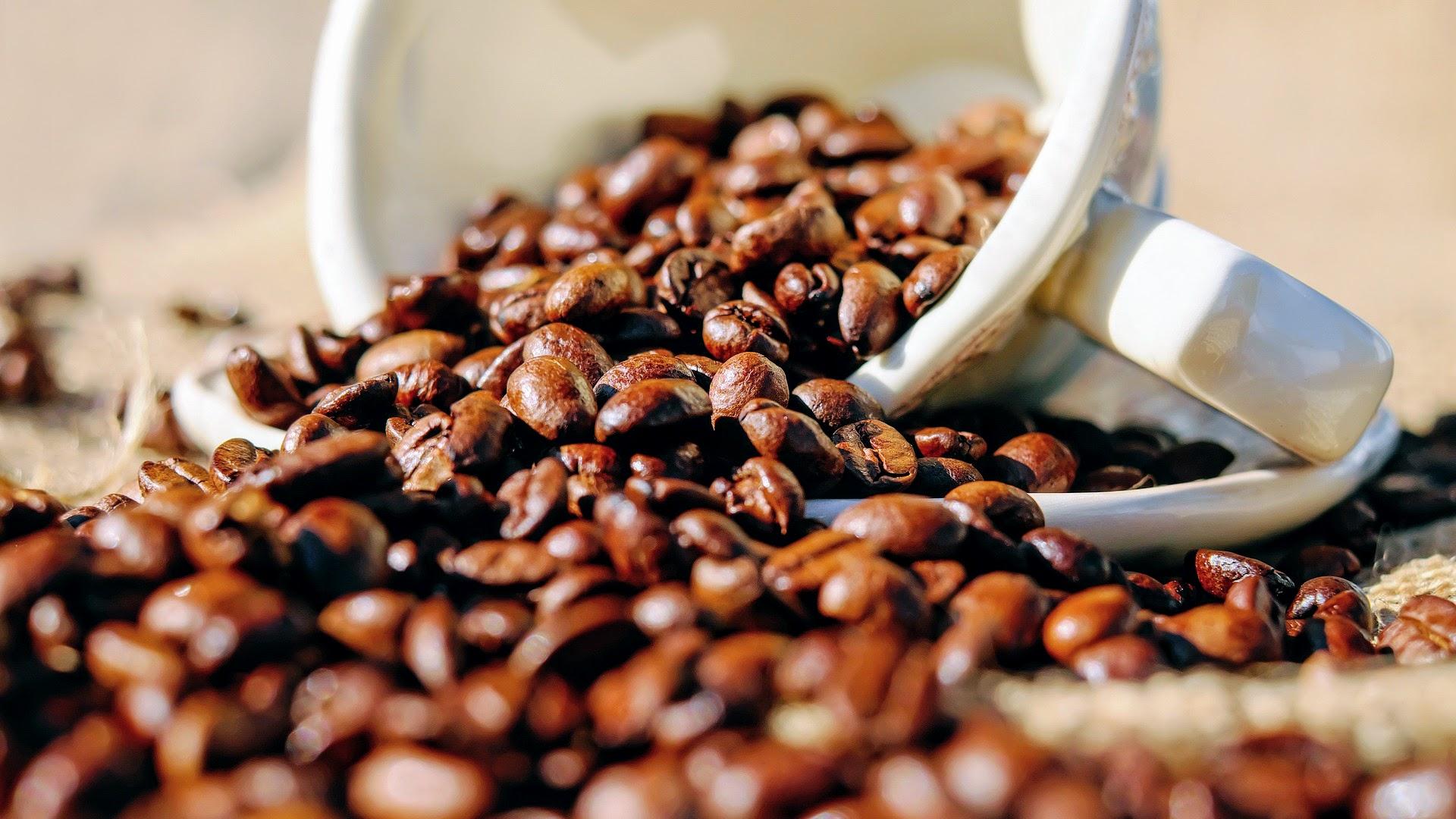 coffee-1576552_1920 (1)