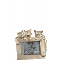 Photo Frame 3 Cats