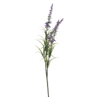 Lavender 3-parts
