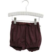 Shorts India