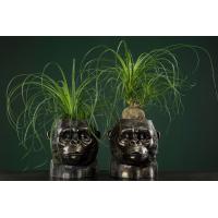 Gorilla vase