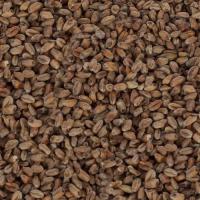 Hvete Malt Mørk 1kg (Weyermann)