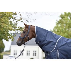 Rider By Horse Sport Hals