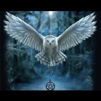 Flygende Ugle med smykke