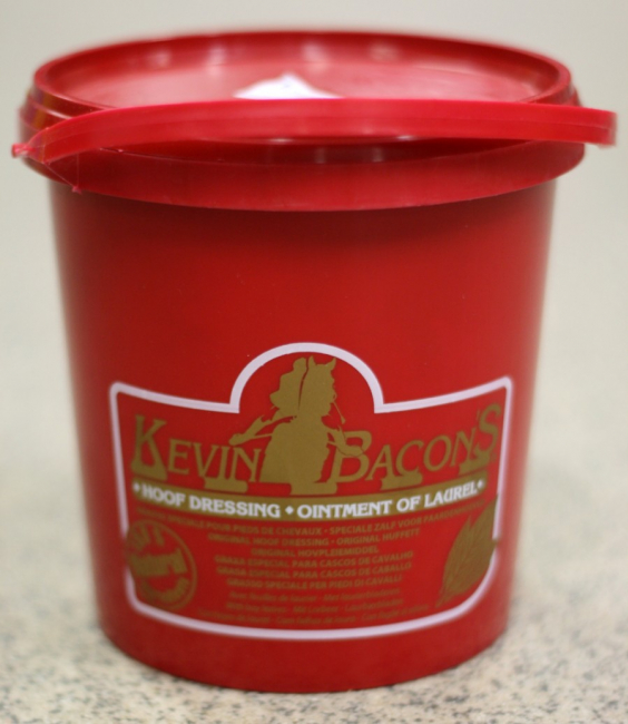 Kevin Bacon Hovfett 1L