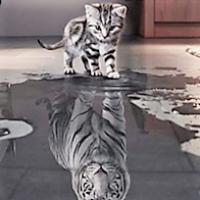 Tiger unge / speilbilde av seg selv