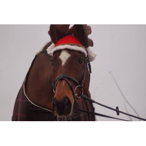 Reinsdyr Juleørehette Rød